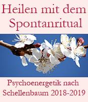 Psychoenergetik nach Schellenbaum